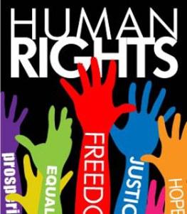 human_rights2013
